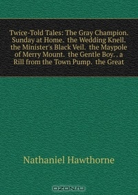 hawthornes display of evil essay